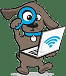 Op zoek naar een hondenfietskar? Tinki.nl helpt!